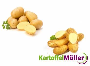 kartoffel sieglinde sullivan