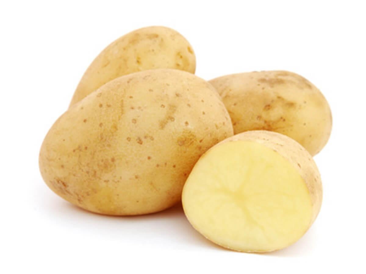 Kartoffel Bilder Kostenlos kartoffel ackersegen kartoffel müller