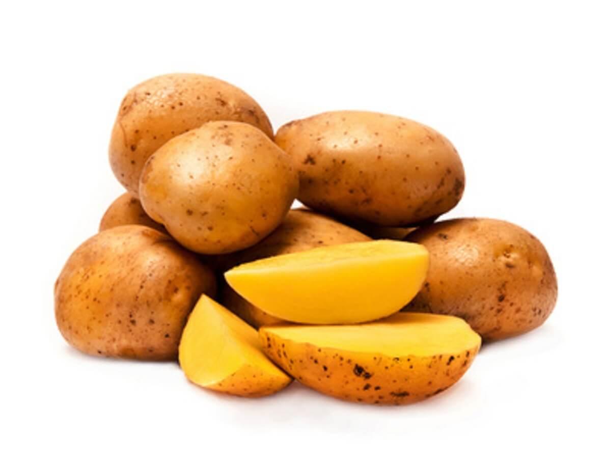 mehlige kartoffelsorten