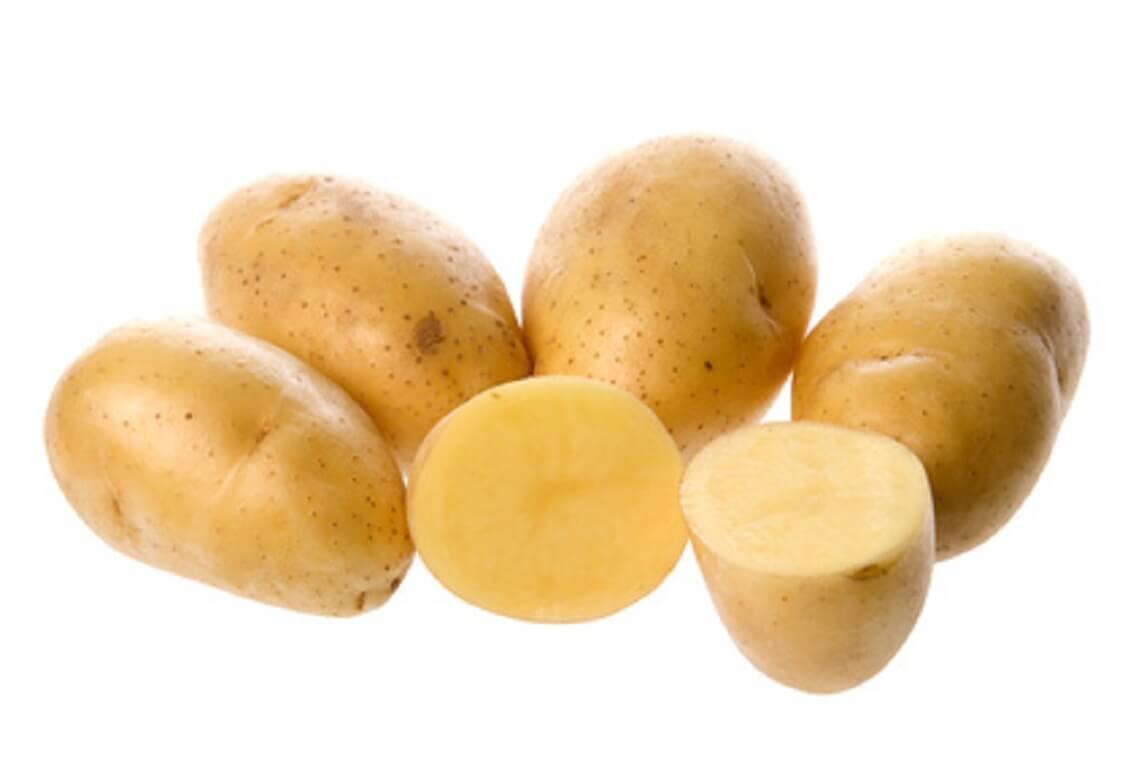 kartoffel nicola kochen