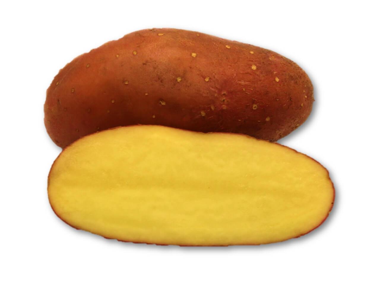 Kartoffel Cherie Kartoffel Müller
